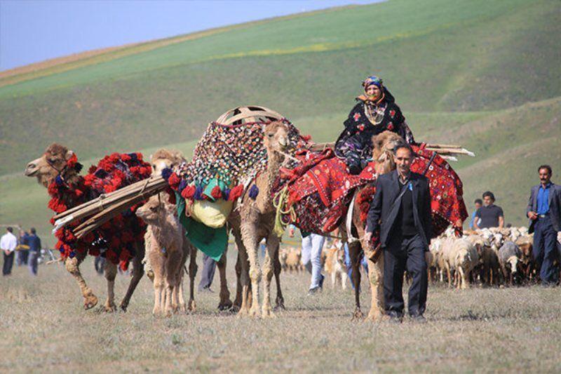 خبرنگاران ورود عشایر به مراتع الیگودرز ممنوع شد