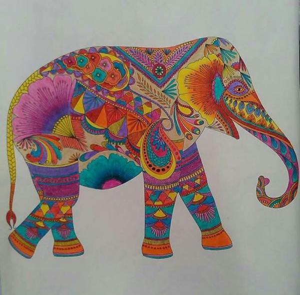 25 نمونه نقاشی حیوانات برای بچه ها برای رنگ آمیزی